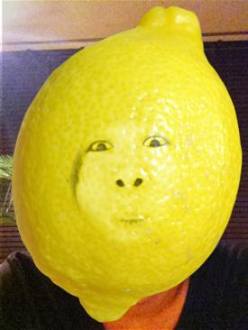 ベジカメのレモン
